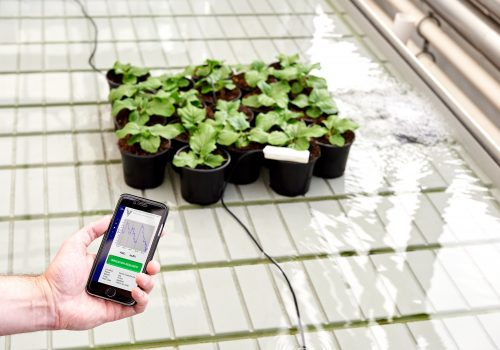 Smart irrigation system using cell phone