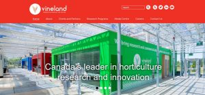 Vineland refreshed website
