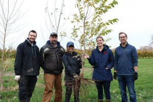 Vineland's Greening the Landscape team