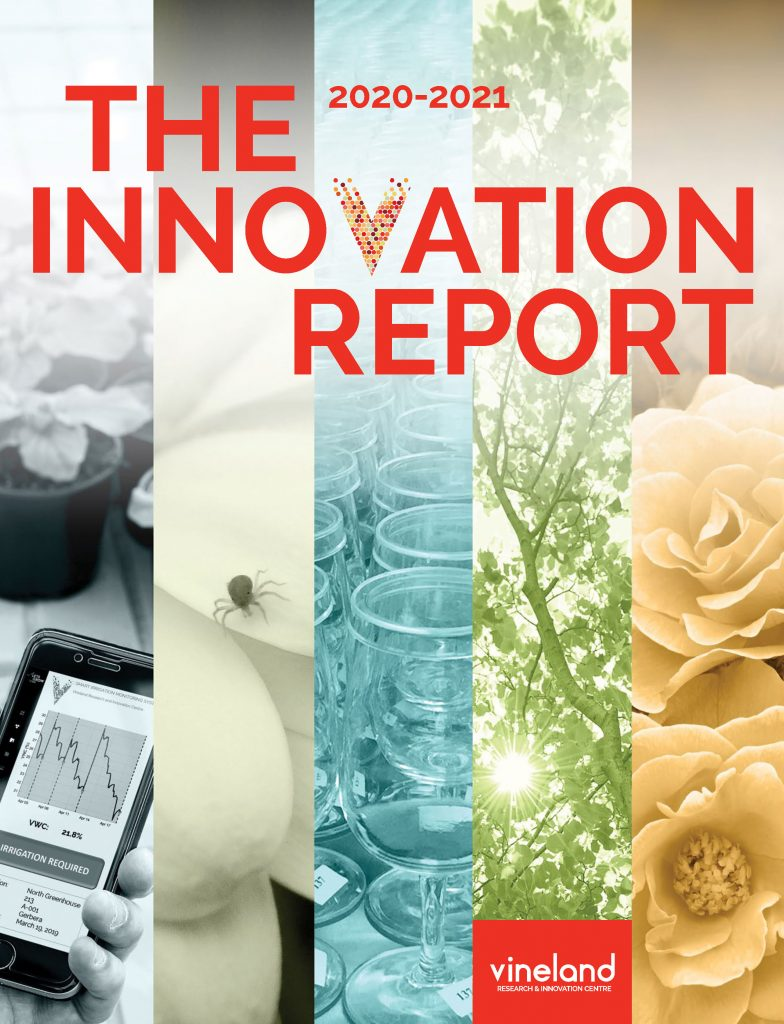 Innovate Report 2020-2021 Cover